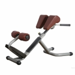 Technogym-Selection-line-Lower-Back-Bench-Back-Extension